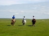 Riding holidays on Bodmin Moor, Cornwall