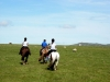 Fantastic riding holidays in Cornwall