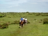 Horse riding holiday Cornwall
