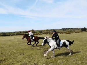 trail ride cornwall