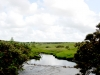 Private livery in Cornwall - scenery on your doorstep