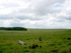 Horse riding and trekking in Cornwall