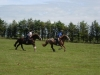 Trail rides across Bodmin Moor for experienced riders